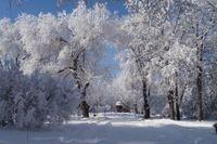 Романтика Кавказских гор на 23 февраля